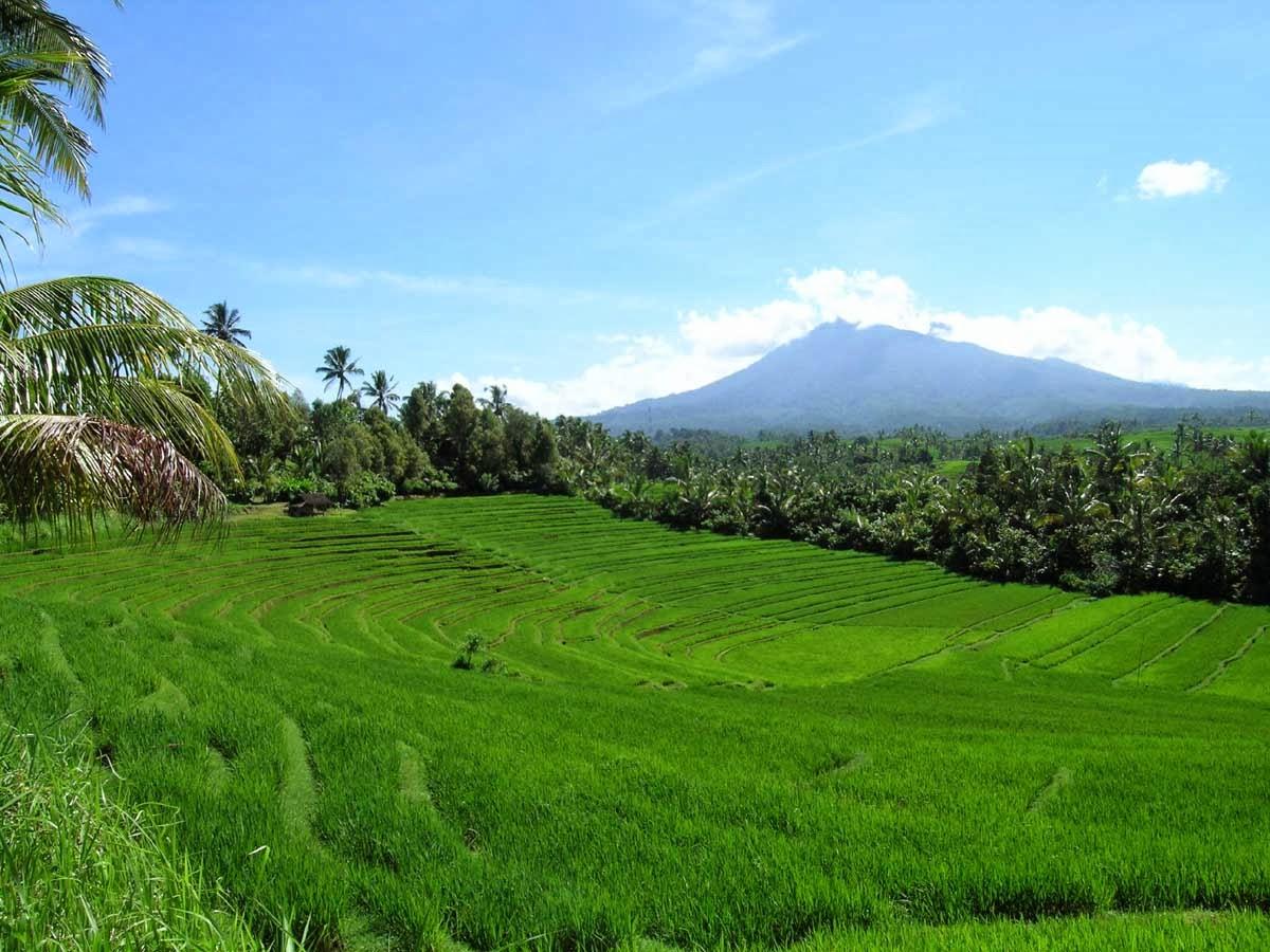 http://yasmingaldaa.files.wordpress.com/2014/06/pengertian-sumber-daya-alam-indonesia.jpg